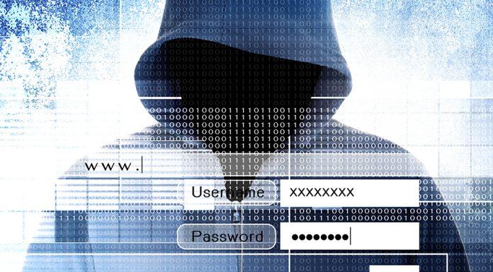 Cyber Kriminalität